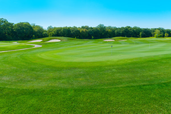 photo golf courses with bright green grass
